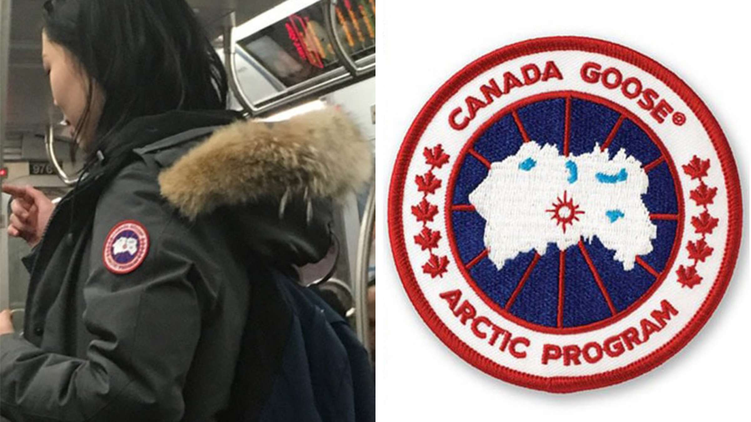 اخبار-کانادا-دزدی-مسلحانه-کاپشن-های-زمستانی-کانادایی-در-شیکاگو