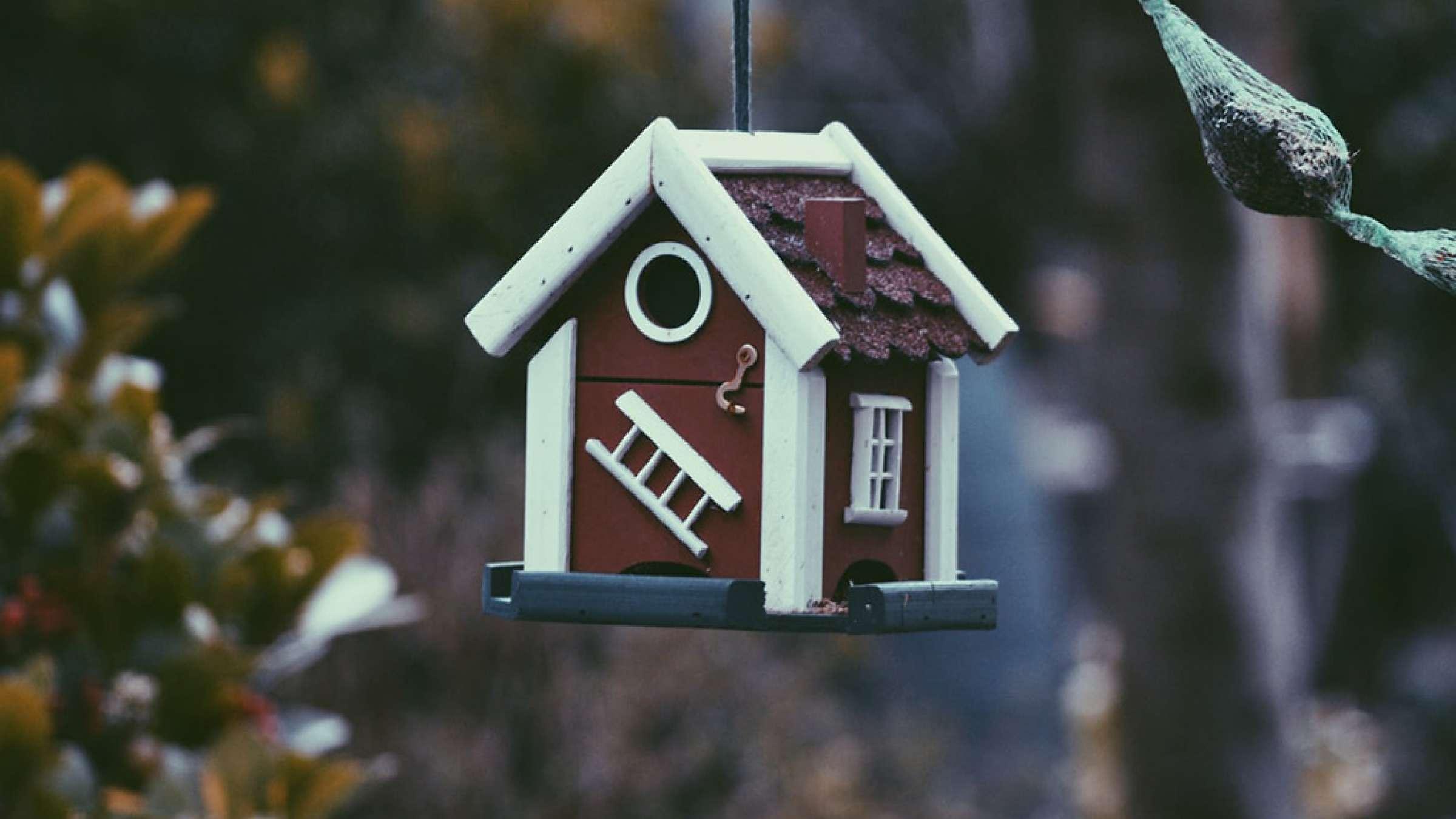 املاک-انواری-خانه-کدام-خانه