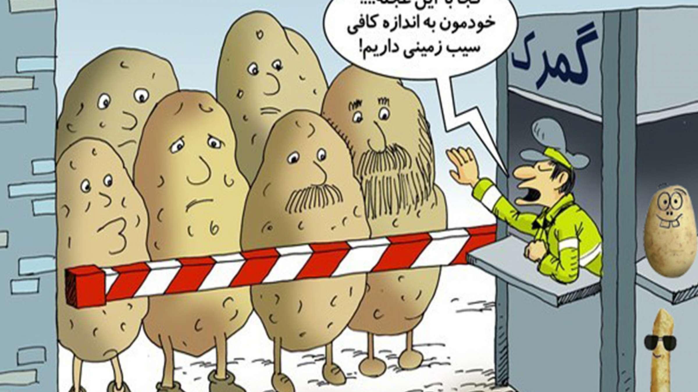 طنز-فضول-تشکیل-انجمن-ملی-سیبزمینی
