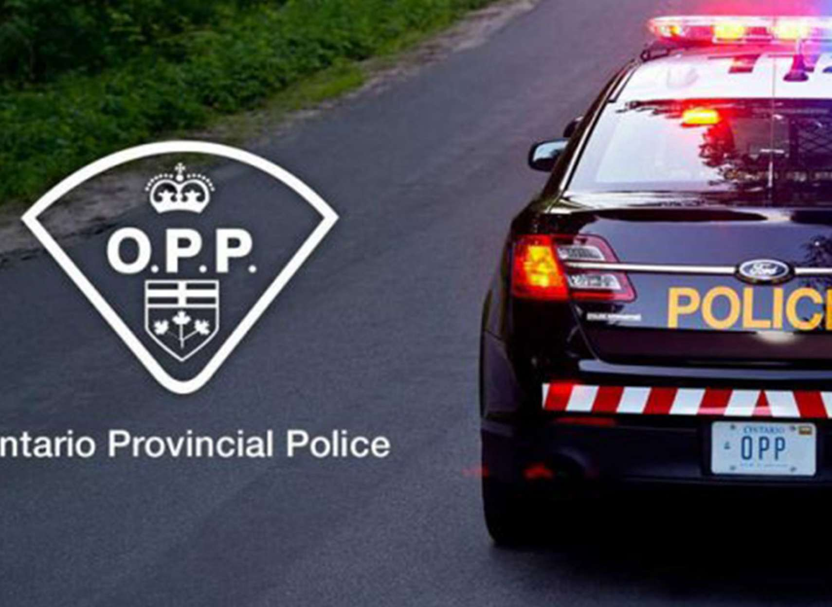 اخبار-تورنتو-پلیس-انتاریو-دیگر-جنسیت-افراد-در-جرایم-را-ذکر-نمیکند