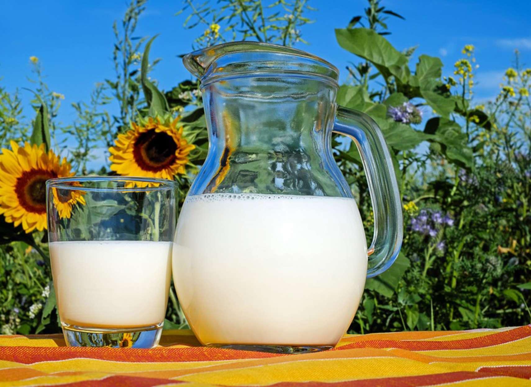 health-milk-organic