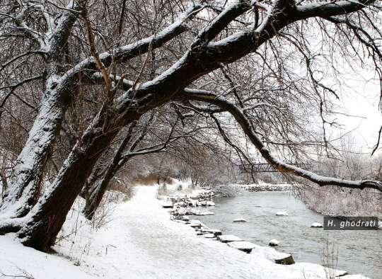 پیچ رود برفی