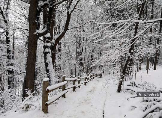 گذرگاه در برف